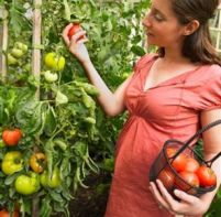 Pregnancy Exposure to Pesticides