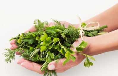Natural Herbs to Avoid During Pregnancy