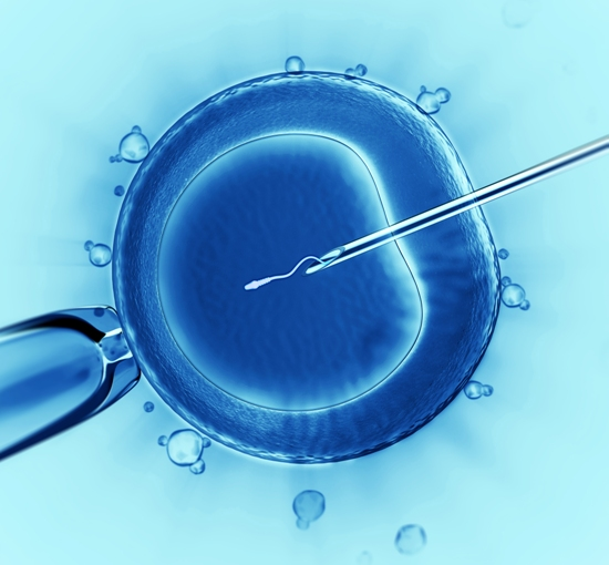 does endometrial scratching increase success rates in IVF